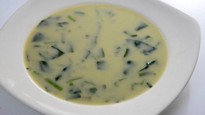 Ispanak Çorbası Tarifi   gaziantepetyemekleri.com